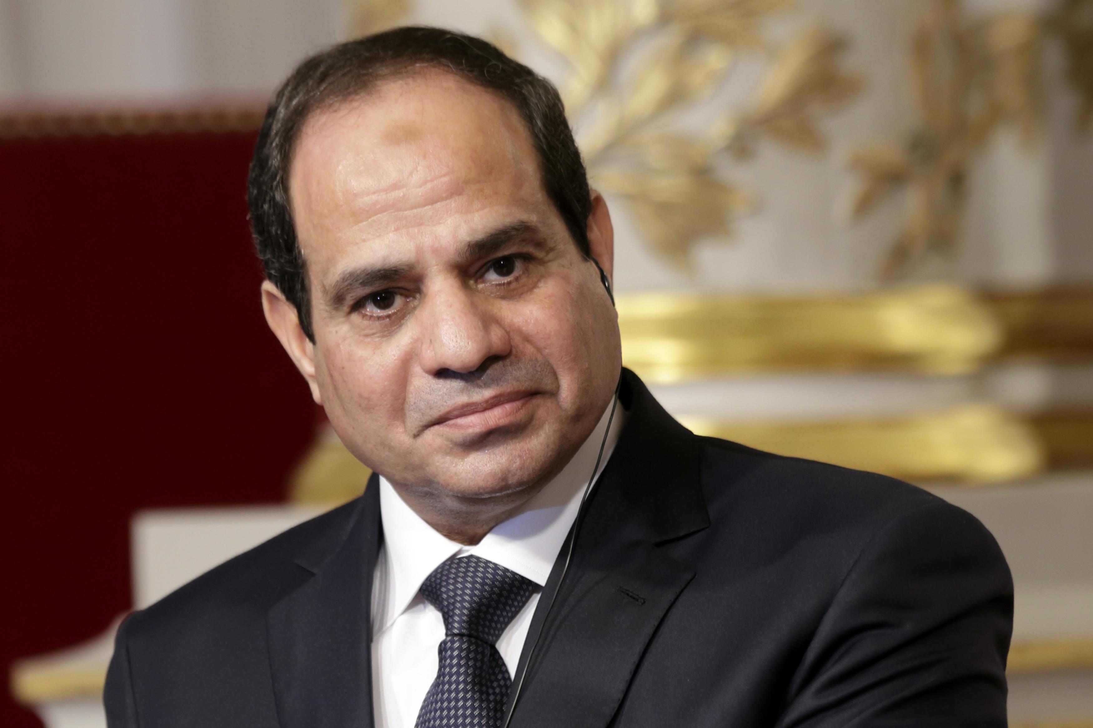 """السيسي: لن نخفي الحقائق بشأن """"المصرية"""""""