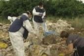 بالفيديو… تعرف على أخطار النفايات التي صدرتها إيطاليا للمغرب بمباركة حكومة بنكيران!