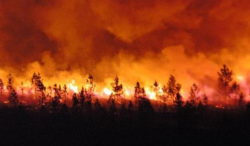 حرائق الغابات بالمغرب: 270 حريقا اجتاحت 1739 هكتارا منذ بداية 2016