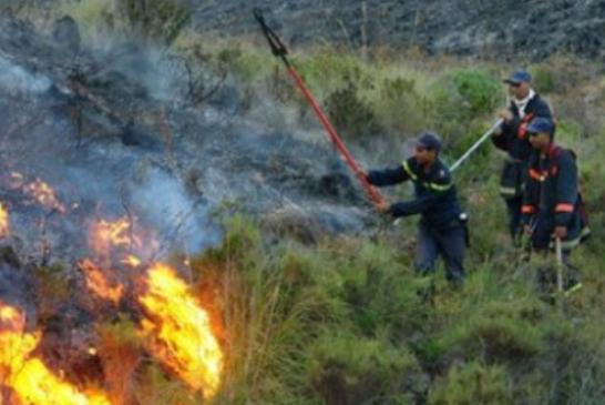 اعتقال متهم بإضرام النار في نحو 60 هكتارا بإقليم شفشاون