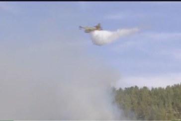 اندلاع حريق بمنطقة غابوية بمدينة طنجة