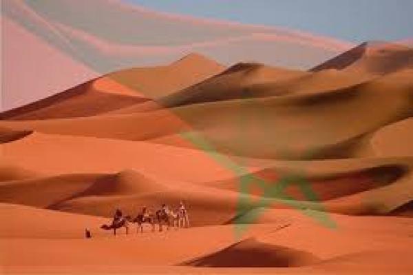 فرنسا تعتقد أن حل قضية الصحراء المغربية لن يتجاوز 2020