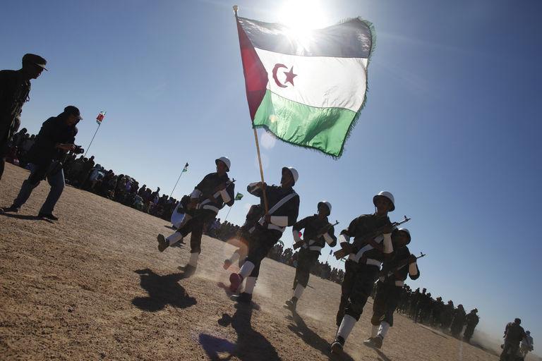 """مجموعة بحث أوروبية تحذر الجزائر من تسليح  """"البوليساريو"""""""