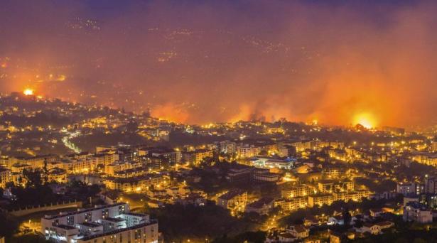 حريق غابوي يخلف 57 قتيلا بالبرتغال بحسب حصيلة جديدة