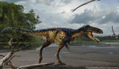 """فتح تحقيق حول بيع """"ذيل ديناصور"""" مغربي في مزاد بالمكسيك"""