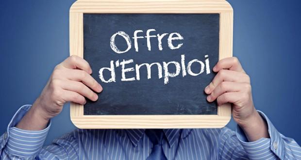 بريكولما أول موقع مغربي لمحاربة البطالة في أوساط الشباب