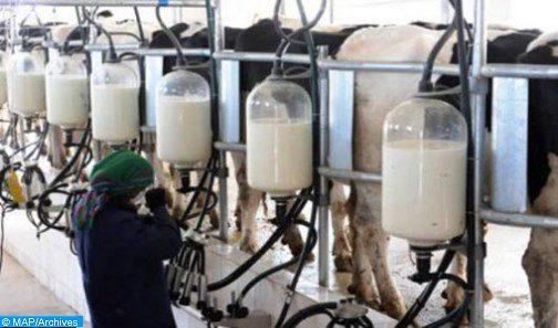 """وزارة الفلاحة توضح: استخدام مسحوق الحليب أو مستحضرات مسحوق الحليب في جميع أنواع الأطعمة """"لا يمثل أي خطر صحي"""""""