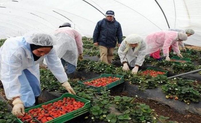 منظمة إسبانية تكشف الأوضاع المأساوية للمغربيات العاملات في الحقول
