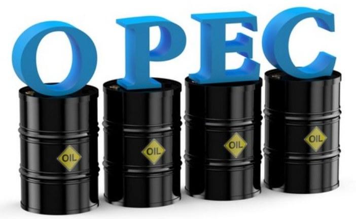 """قطر تنسحب من منظمة الدول المصدرة للبترول """"أوبك"""""""