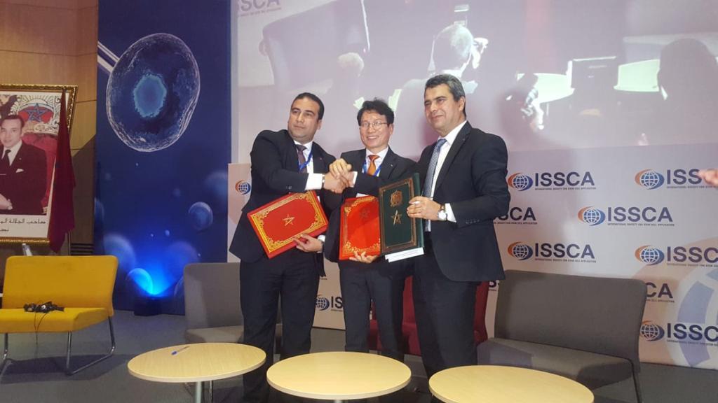 إنشاء أول مركز لاستخراج وزراعة الخلايا الجذعية وإحداث بنك خاص بها في المغرب