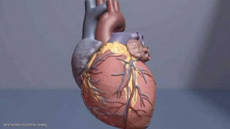 الغذاء المناسب كلمة السر في تلافي مرض القلب