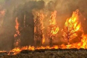 كاليفورنيا… آلاف رجال الإطفاء في سباق مع الزمن لإخماد الحرائق