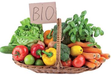 """خبير يكشف حجم زراعة """"البيو"""" في المغرب"""