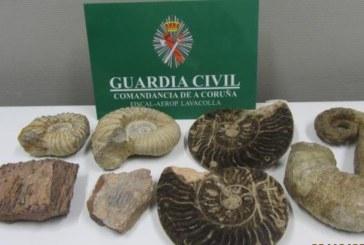 ضبط قطع أحفورية مهربة من المغرب غرب إسبانيا