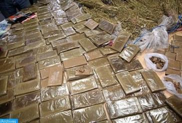 أكادير… إجهاض عملية لتهريب المخدرات على الصعيد الدولي