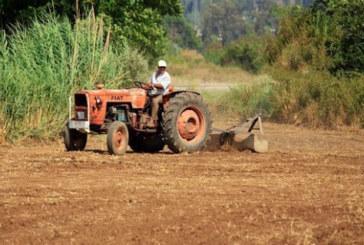 بسبب بوادر الجفاف… فلاحو تاونات يدقون ناقوس الخطر ويطالبون الدولة بالتدخل