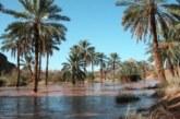 السلطات الجزائرية تسرق المياه المغربية