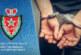 الدار البيضاء… توقيف 6 أشخاص في قضية تتعلق بترويج المخدرات والاختطاف