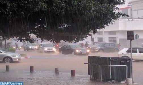 زخات رعدية محليا قوية وطقس حار بعدد من مناطق المملكة