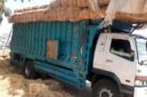 إجهاض محاولة لتهريب طن من مخدر الشيرا كانت على متن شاحنة