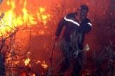 يحدث بالجزائر… حرائق ضخمة تجتاح مدنا عدة