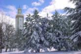 تساقطات ثلجية وطقس بارد وزخات رعدية قوية من الأربعاء إلى السبت بعدد من مناطق المملكة